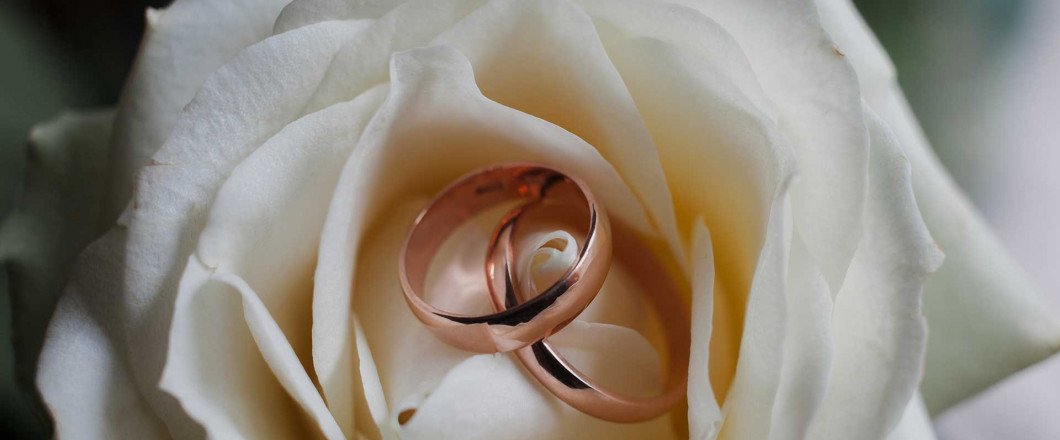 Weddings brands on a white rose in Swartz Creek, MI, engagement rings